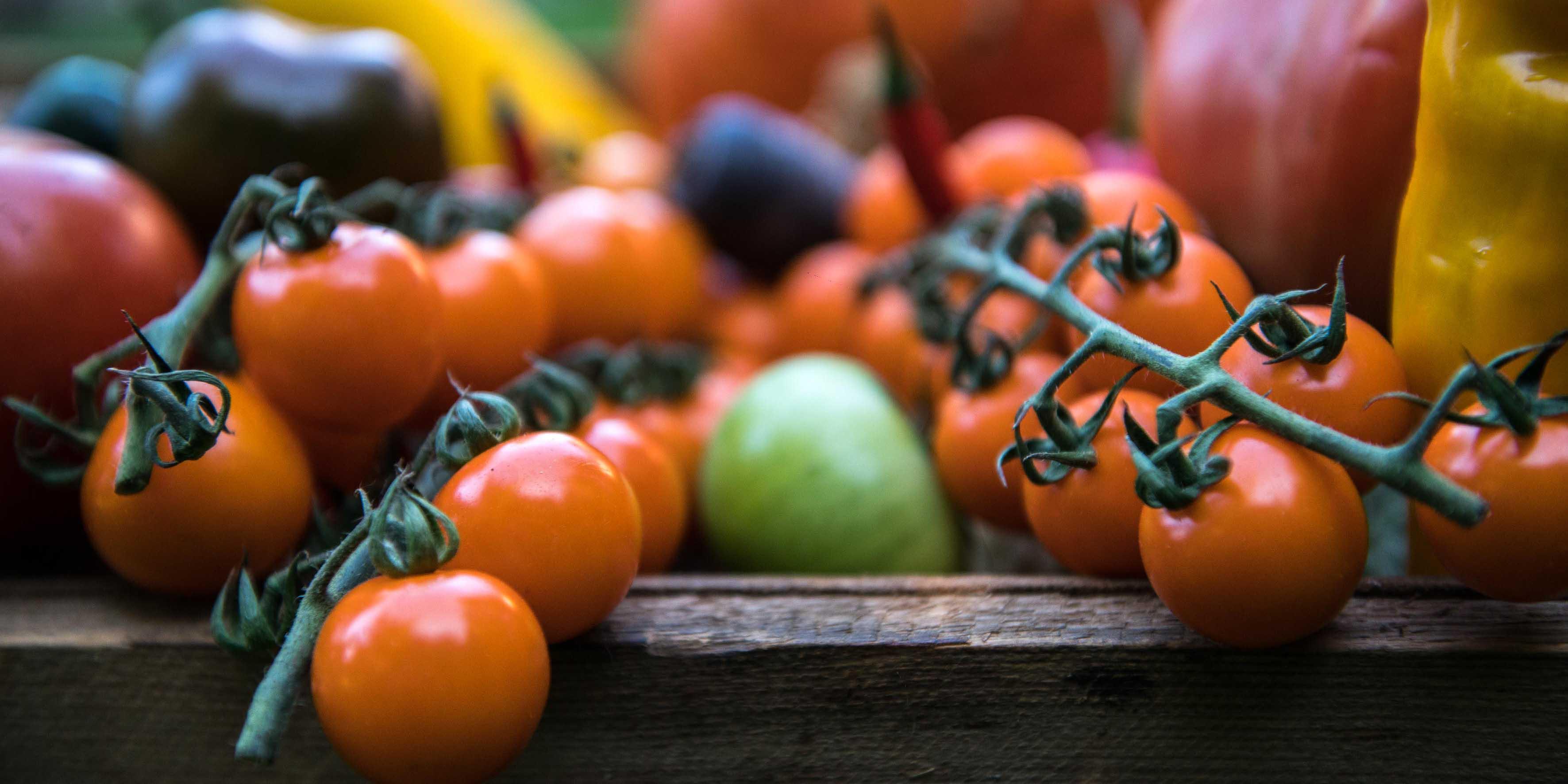 Walter Klunker - Gemüse
