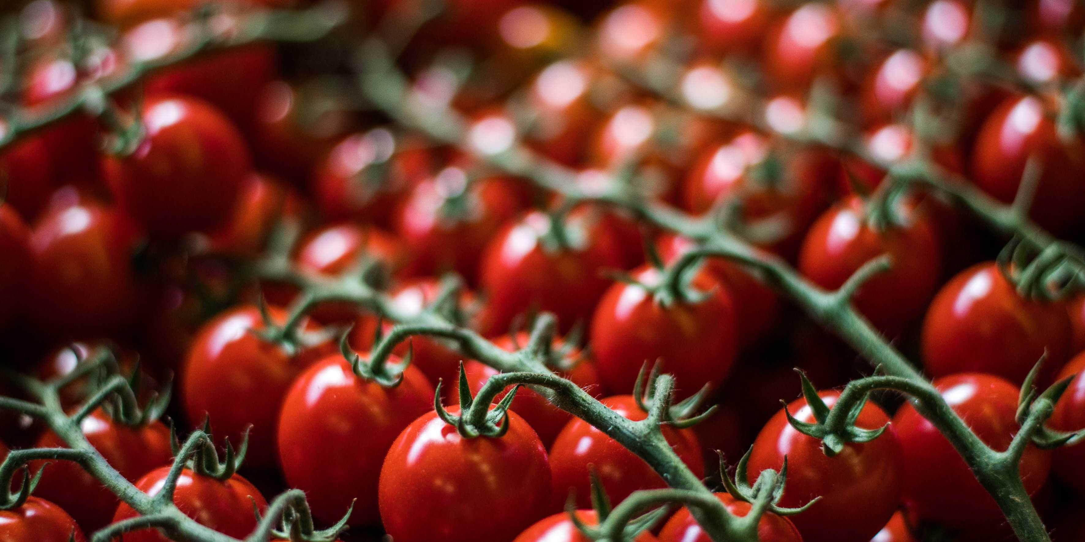 Walter Klunker - Tomaten